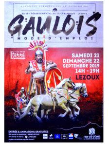 char gaulois5