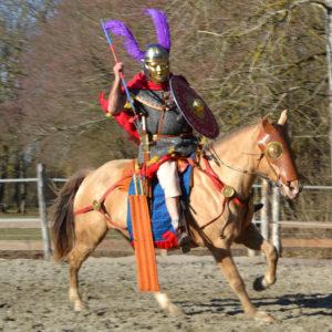 spectacle equestre historique